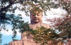 Shurakuen - 聚楽園