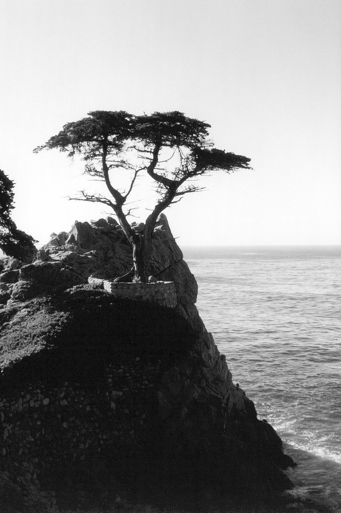Monterey 17 mile 05pb.jp