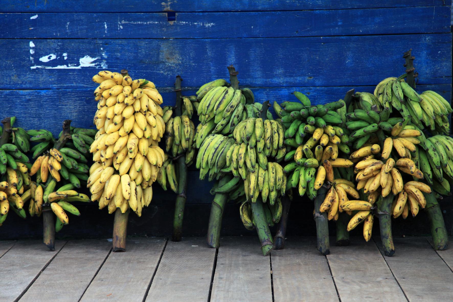 República das Bananas?