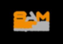 Logo_SAM_coloured_tr#4053B3.png