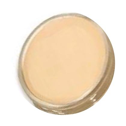 Cream Concealer #03