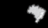 logotipo fo NOVO COM REPRESENTACOES cinz
