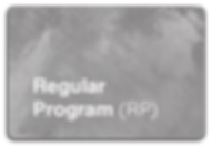 Regular Program (RP).png