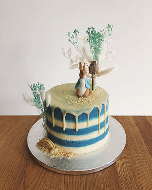 Vegan Peter Rabbit Chocolate Cake