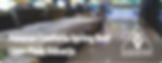 Pameran Comforta Spring Bed di Lippo Plaza Sidoarjo Juni 2018