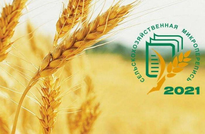 Сельскохозяйственная микроперепись