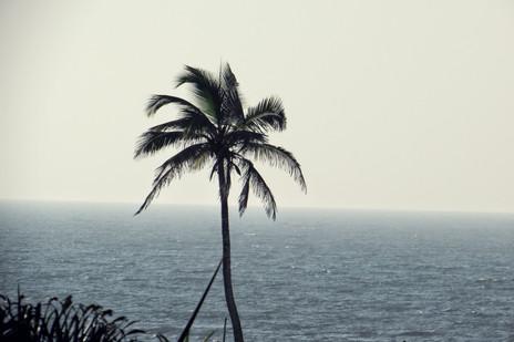 My memoirs of Goa, the tropical paradise