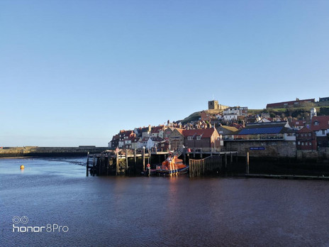 Dating the magestic blues - Whitby
