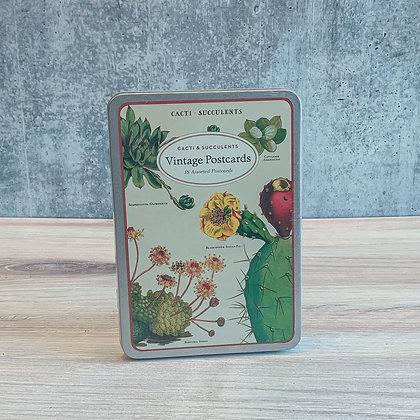 Cacti & Succulents Vintage Postcards
