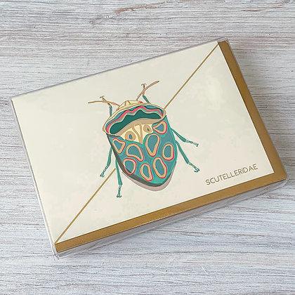 Teal Beetle Boxed Card Set