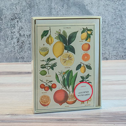 Cavallini & Co Jardin Boxed Notecards