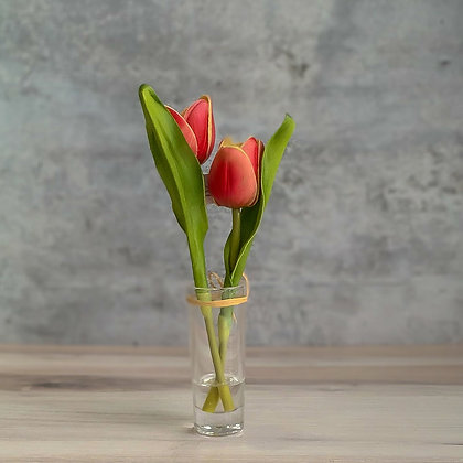 Vase With Mini Red Tulips