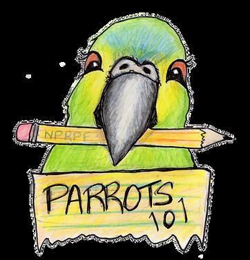 Parrots101LOGO.png