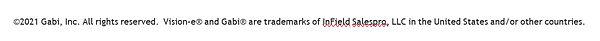 Registered Trademark Lingo Image.jpg