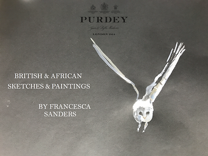 francesca-sanders-wildlife-artist
