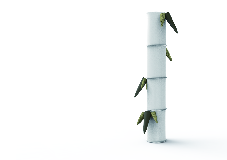 bamboo for portfolio-02