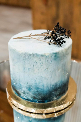 Winter Wedding Cake.JPG