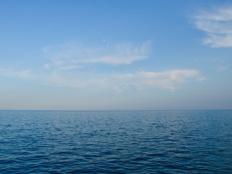 Quién coño me ha mandado a mí ir a ver ballenas