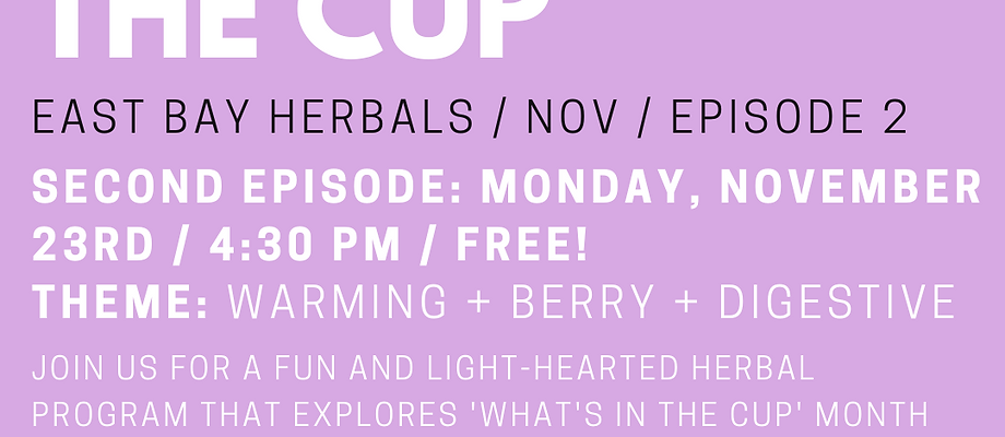 What's In The Cup (Nov)