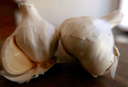 garlic whole.jpeg