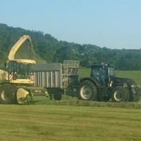 牧草収穫作業