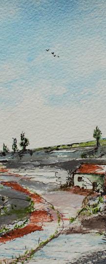 Potteries Landscape 10