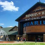 Wonders of Wildlife Aquarium