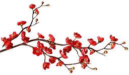 red-cherry-blossomL.jpg