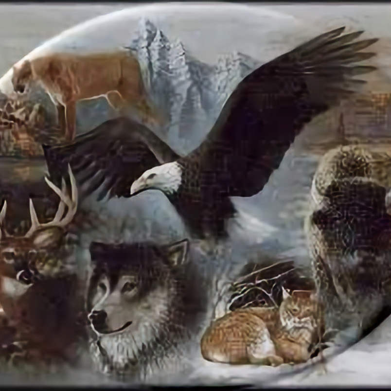 Introduction to Shamanism I Meet Your Power Animal& Learn to Journey Workshop with Sheryl Kozy