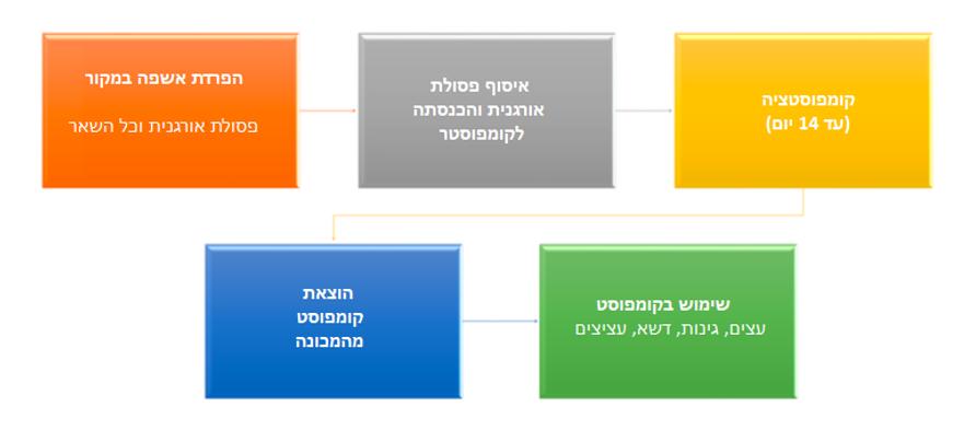 התהליך - בעברית.png