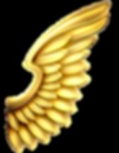 studio des anges
