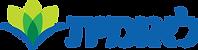 Leumit_Logo.png