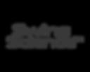 SwingScience logo.png