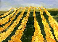 Weinberge, 40x30cm, Öl Leinwand, 2013
