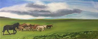 Island Pferde, 100x40cm, Öl Leinwand, 2017