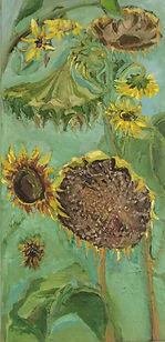 Sonnenblumen, 50x100, Öl Nessel, 2014