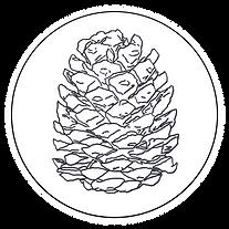 pinecone pictures logo