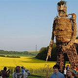 wicker man.jpeg