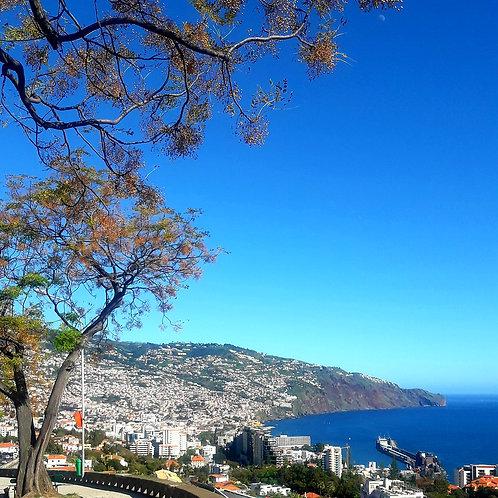 Tour de ville de Funchal