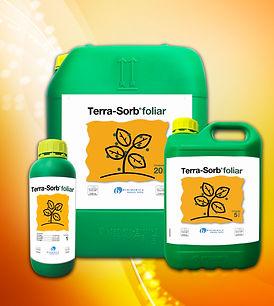 TERRA SORB TODAS 2.jpg