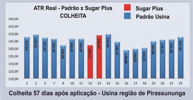 grafico 2 sugar plus.jpg