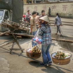 Vietnamese Sapodilla Fruit Merchant