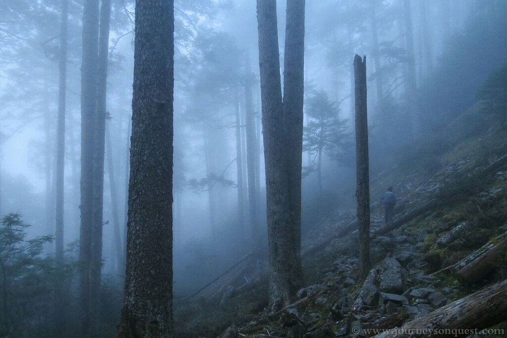 Mists shroud the forested slopes of Snow Mountain in Taiwan 台灣雪山