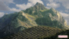 olivar de alta montaña, Sierra de la Horconera en Priego de Córdoba