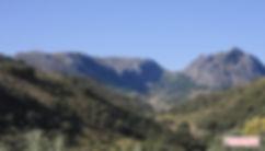 Priego de Córdoba, alterna bosque mediterraneo, montaña y olivar