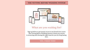 THE VETTING BEFORE WEDDING SYSTEM-6.png