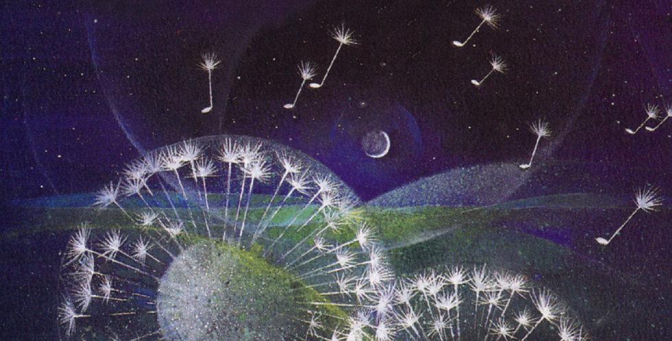 Paradise Haunts...: Music by John Metcalf
