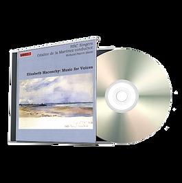 #27 CD TN Transparent.png