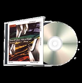 #5 CD TN Transparent.png