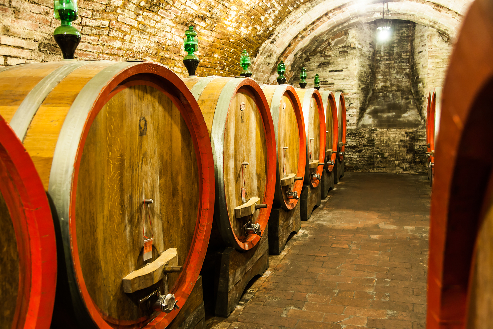 Wine Cave Tours